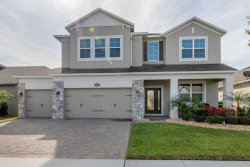 Photo of 3472 Somerset Park Drive, ORLANDO, FL 32824 (MLS # S5027489)