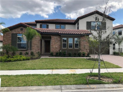 Photo of 16746 Turtle Hatch Drive, WINTER GARDEN, FL 34787 (MLS # S5028769)
