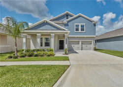 Photo of 10282 Love Story Street, WINTER GARDEN, FL 34787 (MLS # S5036577)