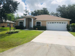 Photo of 2940 Evans Drive, KISSIMMEE, FL 34758 (MLS # S5038007)