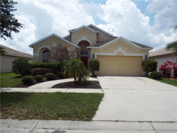 Photo of 11111 Silver Dancer Drive, RIVERVIEW, FL 33579 (MLS # T2819064)