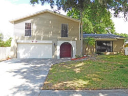 Photo of 4128 Dellbrook Drive, TAMPA, FL 33624 (MLS # T2824701)