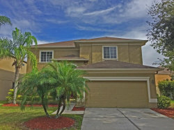 Photo of 19307 Aqua Springs Drive, LUTZ, FL 33558 (MLS # T2846444)
