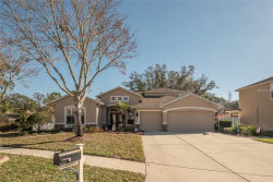 Photo of 1625 Harvest Grove Court, VALRICO, FL 33596 (MLS # T2921503)