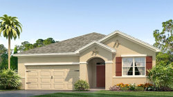 Photo of 9523 Sunstone Boulevard, THONOTOSASSA, FL 33592 (MLS # T2932707)