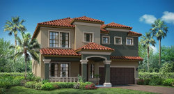 Photo of 13190 Green Violet Drive, RIVERVIEW, FL 33579 (MLS # T3102594)