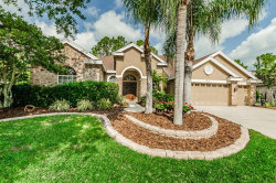 Photo of 4608 Ayron Terrace, PALM HARBOR, FL 34685 (MLS # T3103151)