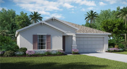 Photo of 14118 Covert Green Place, RIVERVIEW, FL 33579 (MLS # T3106686)