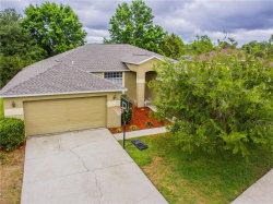Photo of 19707 Spring Willow Court, ODESSA, FL 33556 (MLS # T3107308)