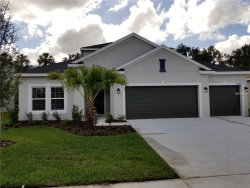 Photo of 7605 Mill Hopper Court, PALMETTO, FL 34221 (MLS # T3107575)