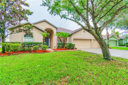 Photo of 2616 Abbey Grove Drive, VALRICO, FL 33594 (MLS # T3108187)