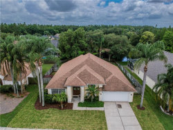 Photo of 9906 Colonnade Drive, TAMPA, FL 33647 (MLS # T3108866)
