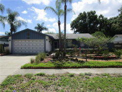 Photo of 15909 Crying Wind Drive, TAMPA, FL 33624 (MLS # T3109076)