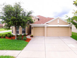 Photo of 11018 Belle Haven Drive, NEW PORT RICHEY, FL 34654 (MLS # T3109128)