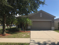 Photo of 8560 Deer Chase Drive, RIVERVIEW, FL 33578 (MLS # T3110115)