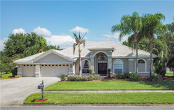 Photo of 6919 Aqueduct Terrace, ODESSA, FL 33556 (MLS # T3112320)