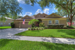 Photo of 12522 River Birch Drive, RIVERVIEW, FL 33569 (MLS # T3113387)