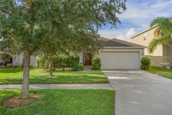 Photo of 10612 Shady Preserve Drive, RIVERVIEW, FL 33579 (MLS # T3113545)