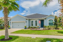 Photo of 11022 Spring Point Circle, RIVERVIEW, FL 33579 (MLS # T3113949)