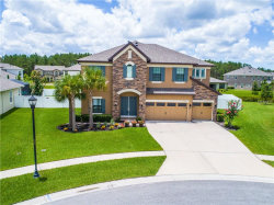 Photo of 19334 Ranchview Court, LAND O LAKES, FL 34638 (MLS # T3114177)