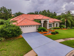 Photo of 6017 Mariners Watch Drive, TAMPA, FL 33615 (MLS # T3114469)