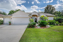 Photo of 4001 Canter Court, VALRICO, FL 33596 (MLS # T3114487)