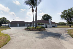 Photo of 6709 W Knights Griffin Road, PLANT CITY, FL 33565 (MLS # T3116807)