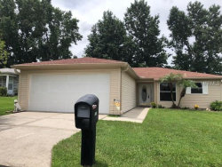 Photo of 29211 Princeville Drive, SAN ANTONIO, FL 33576 (MLS # T3117655)