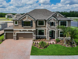 Photo of 19221 Briarbrook Drive, TAMPA, FL 33647 (MLS # T3117729)