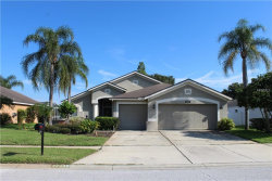 Photo of 22439 Willow Lakes Drive, LUTZ, FL 33549 (MLS # T3118094)