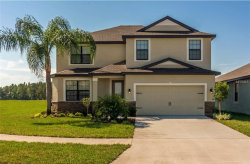 Photo of 12528 Ballentrae Forest Drive, RIVERVIEW, FL 33579 (MLS # T3118830)