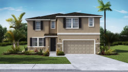 Photo of 12537 Candleberry Circle, TAMPA, FL 33635 (MLS # T3119383)