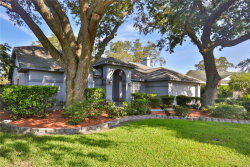 Photo of 15122 Craggy Cliff Street, TAMPA, FL 33625 (MLS # T3119523)