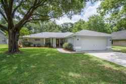 Photo of 14203 Briarthorn Drive, TAMPA, FL 33625 (MLS # T3119721)