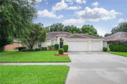 Photo of 3008 Partridge Point Trail, VALRICO, FL 33596 (MLS # T3120147)