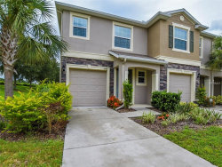 Photo of 10419 Butterfly Wing Court, RIVERVIEW, FL 33578 (MLS # T3120356)