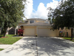 Photo of 10517 Lucaya Drive, TAMPA, FL 33647 (MLS # T3120622)