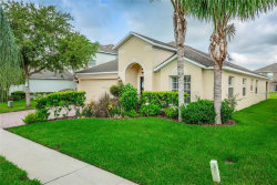 Photo of 1405 Impatiens Court, TRINITY, FL 34655 (MLS # T3121331)