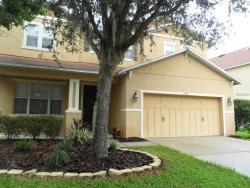 Photo of 7243 Bridgeview Drive, WESLEY CHAPEL, FL 33545 (MLS # T3121586)