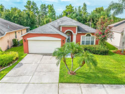 Photo of 1612 Crossvine Court, TRINITY, FL 34655 (MLS # T3123205)