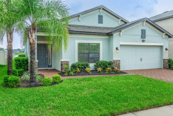 Photo of 1792 Nature View Drive, LUTZ, FL 33558 (MLS # T3124596)