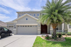 Photo of 20112 Natures Hike Way, TAMPA, FL 33647 (MLS # T3124709)