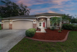 Photo of 4010 Canter Court, VALRICO, FL 33596 (MLS # T3124903)