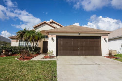 Photo of 1207 Horsemint Lane, WESLEY CHAPEL, FL 33543 (MLS # T3125124)