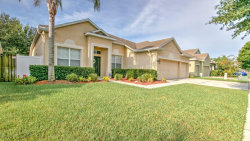 Photo of 11712 Summer Springs Dr, RIVERVIEW, FL 33579 (MLS # T3125409)