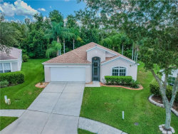 Photo of 5416 Seattle Slew Drive, WESLEY CHAPEL, FL 33544 (MLS # T3125430)