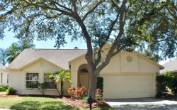 Photo of 1871 Wood Haven Street, TARPON SPRINGS, FL 34689 (MLS # T3125502)