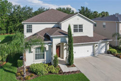 Photo of 4150 Wildstar Circle, WESLEY CHAPEL, FL 33544 (MLS # T3125661)