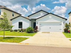 Photo of 11848 Thicket Wood Drive, RIVERVIEW, FL 33579 (MLS # T3127434)