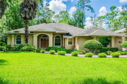 Photo of 27800 Lincoln Place, WESLEY CHAPEL, FL 33544 (MLS # T3129108)